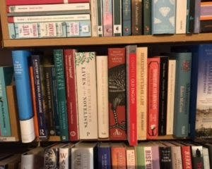 Lit Study & Books on Books
